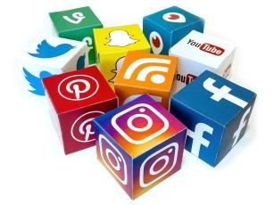 social media marketing & management- Polish Your Business - 30
